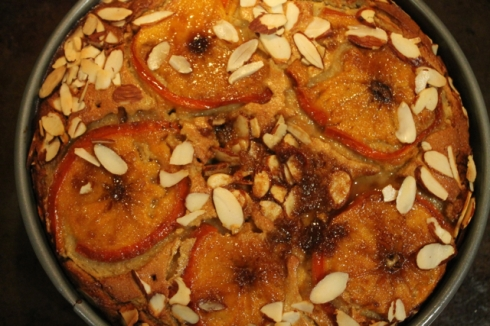 Persimmon Cake11